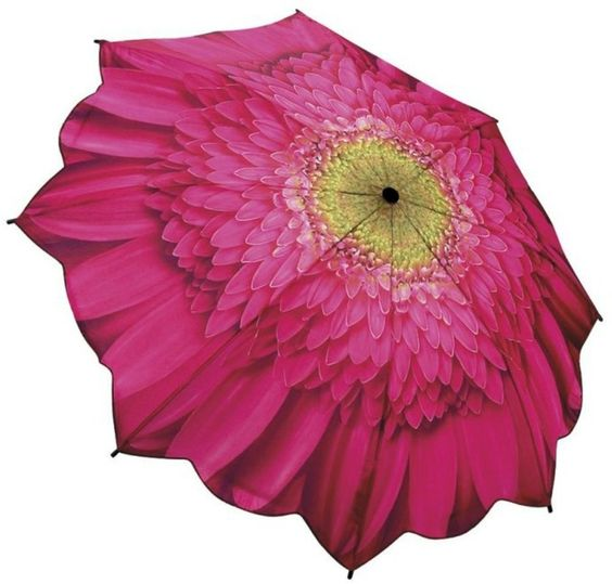 Gerber Daisy Umbrella
