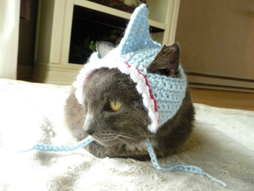 Pet Shark Costume